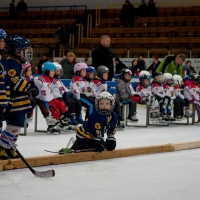 hokej (8).jpg
