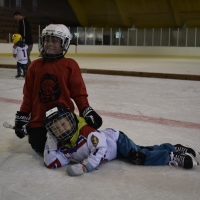 hokej (11).jpg