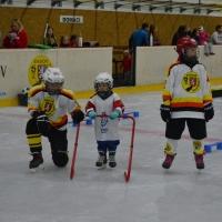 Nábor v rámci akce Týden hokeje 28.9 (113).JPG