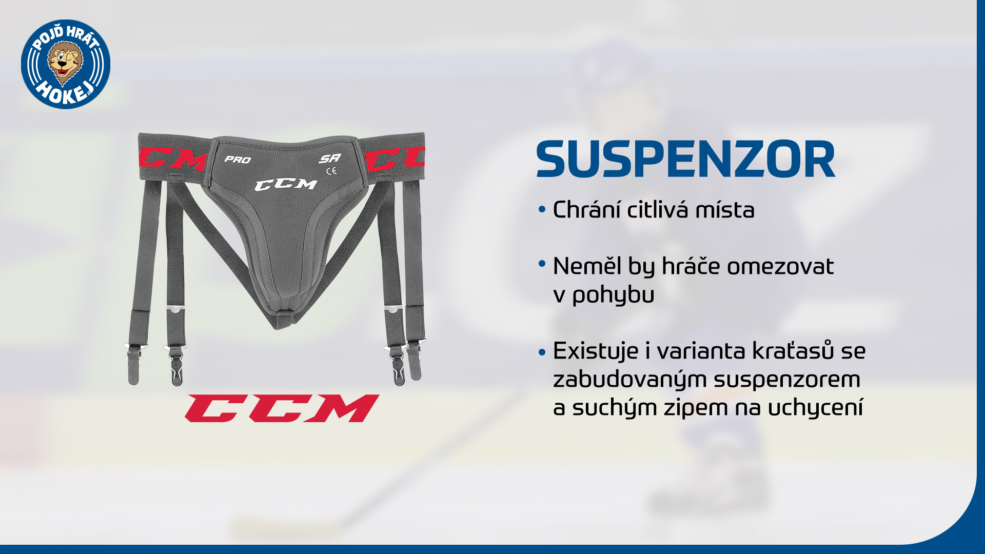 Suspensor.jpg