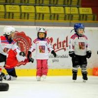12pojd-hrat-hokej-201912.JPG