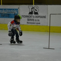 hokej (4).jpg