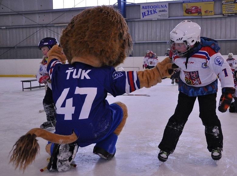 Týden hokeje v Třebechovicích pod Orebem