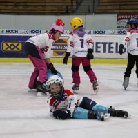 hokej (13).jpg