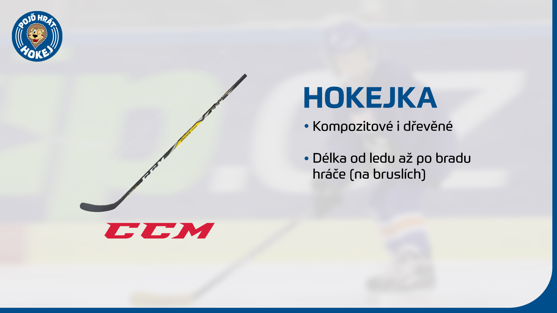 Hokejka.jpg