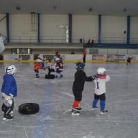 hokej (3).jpg