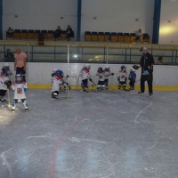 hokej (12).jpg
