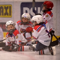 29pojd-hrat-hokej29.JPG
