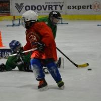 hokej (9).jpg