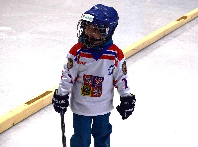Týden hokeje ve Skutči